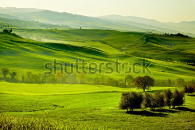 Fototapete Countryside, San Quirico d`Orcia , Tuscany, Italy