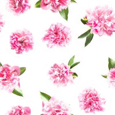 Fototapete Creative seamless pattern of pink peony flower on white. Minimal flat lay. Top view.