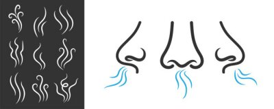 Fototapete Creative vector illustration of smell symbols, nose, air, vapour smoke isolated on background. Art design breathing aroma smell template. Abstract concept smoke steam pictograms, nose senses element