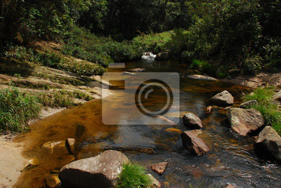 creek among stones among vegetation brazil fototapete. Black Bedroom Furniture Sets. Home Design Ideas