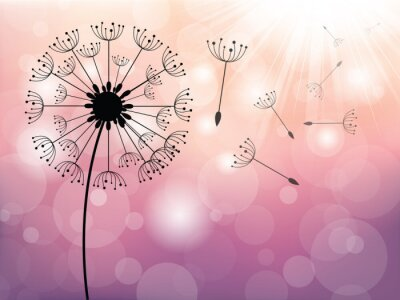 Fototapete Dandelion on wind, vector background