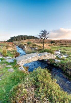Fototapete Dartmoor Nationalpark entfernt