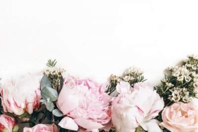 Fototapete Decorative web banner made of beautiful pink peonies, rosies and eucalyptus isolated on white background. Feminine floral frame composition. Styled stock photo.Empty space. Flat lay, top view.
