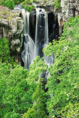 Fototapete Denham Falls in Beechmont, Queensland, Australien. Das Hotel liegt im Denham Reserve.