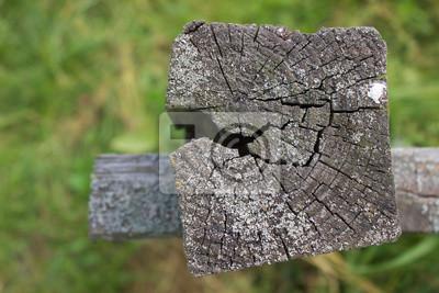 Die Alten Zaun Mit Einem Riss Und Flechten Fototapete Fototapeten