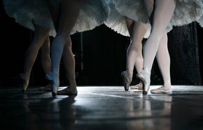 Fototapete Die Ballerina