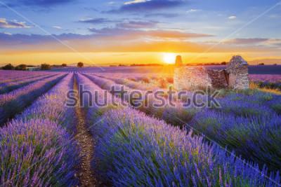 Fototapete Die Sonne geht über einem schönen violetten Lavendel in Valensole unter. Provence, Frankreich