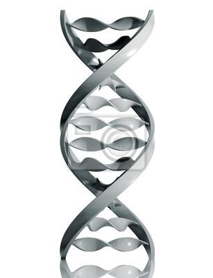Fototapete DNA-Symbol auf weißem Hintergrund, 3d isoliert.