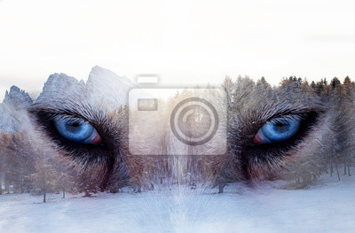 Fototapete Double exposure image of a Siberian husky dog and a snowy pine forest.