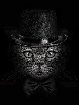 Fototapete Dunkle Mündung Katze close-up in einem Hut und Krawatte Schmetterling