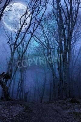 Fototapete Dunkle Nacht Wald Agaist Vollmond