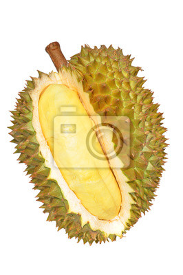 Durian isoliert auf weißem Hintergrund