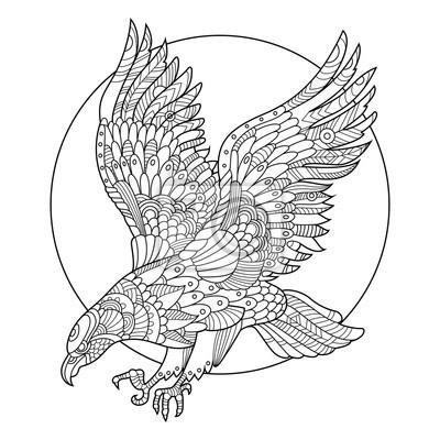 Eagle Vogel Malbuch für Erwachsene Vektor