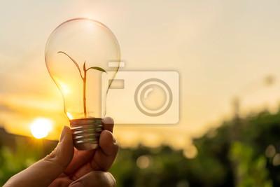 Fototapete Ecology energy concept.