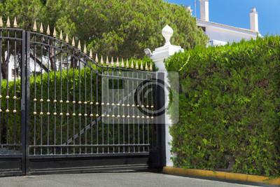 Edle Einfahrt Zaun Und Hecke Fototapete Fototapeten Vorgarten