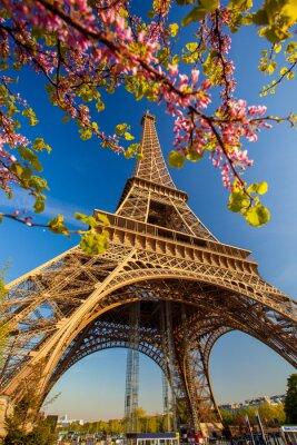 Fototapete Eiffelturm im Frühling in Paris, Frankreich