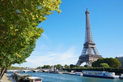 Fototapete Eiffelturm und Seine Blick auf den Fluss mit grünen Ästen, sonnig