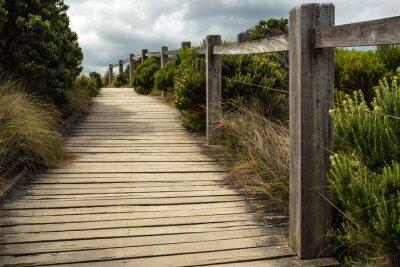 Fototapete Ein hölzerner Gehweg entlang einem Zaun mit der grünen Vegetation, die auf beiden Seiten unter einem bewölkten Himmel wächst. Dieses liegt irgendwo entlang der großen Ozeanstraße in Australien.