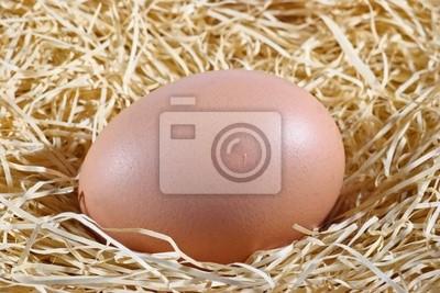 Ein Huhn Ei in einem Nest aus Heu