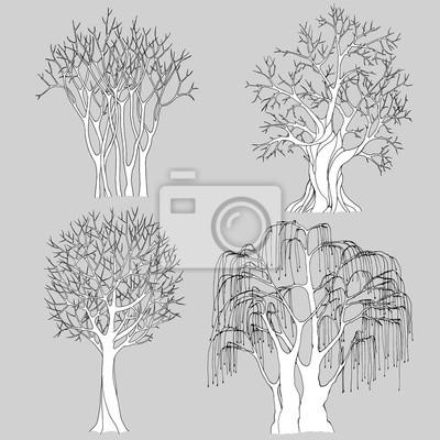 Ein satz von vier kahlen bäumen gezeichnet mit schwarzen konturen ...