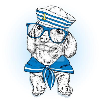 0ec3bf661fb4b Fototapete Ein schöner Hund in Seemannskleidung. Vektor-Illustration. Tier  in Kleidung und Accessoires