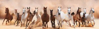 Fototapete Eine Herde von Pferden, die auf dem Sandsturm