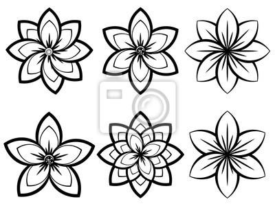 Einfache schwarzweiss-blumen fototapete • fototapeten Blütenblätter ...