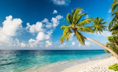 Fototapete Einsamer Strand auf den Malediven