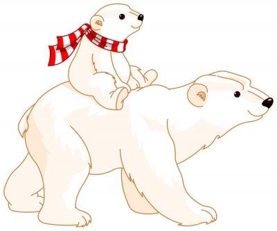 Fototapete Eisbär Mama und Baby