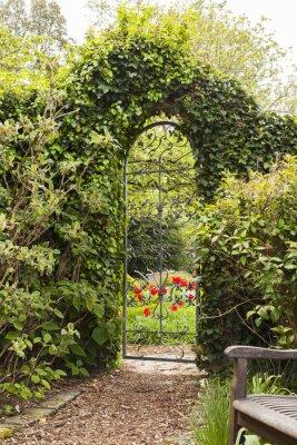 Fototapete Eisernes Gartentor in Buchsbaumhecke