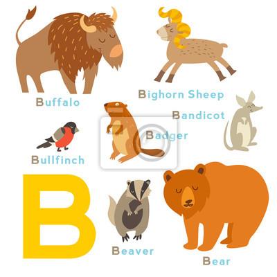 Englisches Alphabet. Vektor-Illustration, isoliert auf weißem Hintergrund