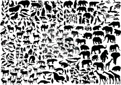 Fototapete enormen Tiere Silhouetten Sammlung