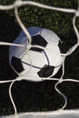 Erhöhte Ansicht Des Fußballs Und Netzes Auf Feld
