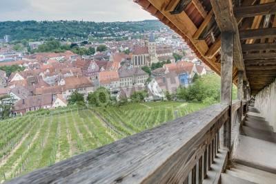 Esslingen Am Neckar Blick Von Der Treppe Burgstaffel Zum Schloss