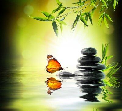 Fototapete exklusiven empfindlichen Konzept - Schmetterling auf Wasser im Garten