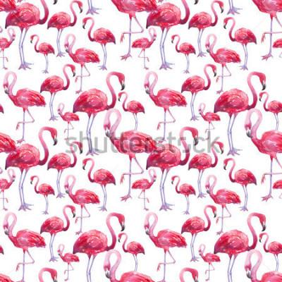Fototapete Exotischer Flamingo des Aquarellvogels