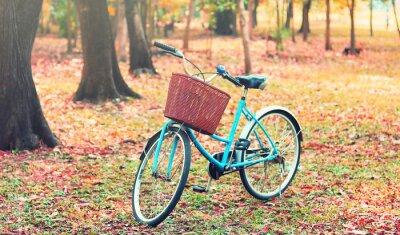 Fototapete Fahrrad für Freizeitreisen. (Fokus im Korb) im Jahrgang Retro-Ton