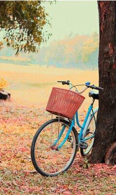 Fototapete Fahrrad für Freizeitreisen. (Fokus im Korb) Jahrgang Retro-Ton