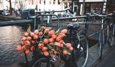 Fototapete Fahrrad mit Tulpen