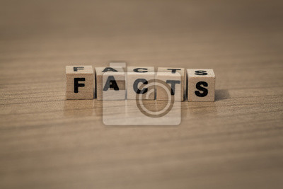 Fakten in Holzwürfel