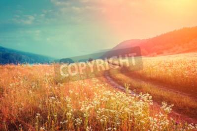 Fototapete Fantastische nebligen Fluss mit frischem Gras in der Sonne. Dramatische ungewöhnliche Szene. Warmer Sonnenuntergang auf Dnister. Ukraine, Europa. Schönheit Welt. Retro- und Weinleseart, weicher Filter