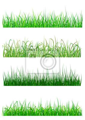 Feld-und Wiesengras Muster