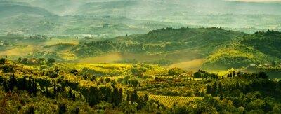 Fototapete Felder in der Toskana
