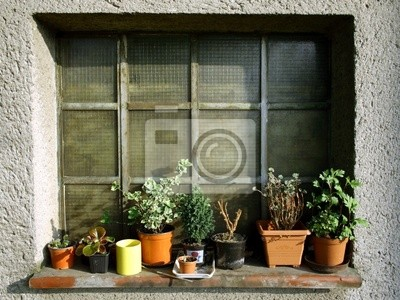 Fenster In Garten Mit Blumen Im Topf Fototapete Fototapeten