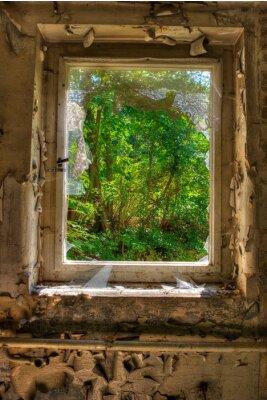 Fototapete Fenster zum Garten