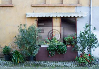 Fensterläden mit pflanzen fototapete u2022 fototapeten dachrinne