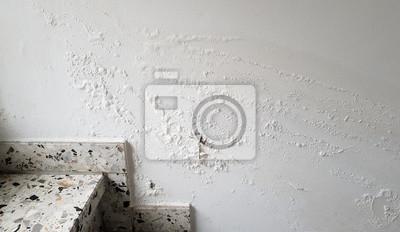 Feuchtigkeit wand fototapete • fototapeten Whitecap, Wasserschäden ...