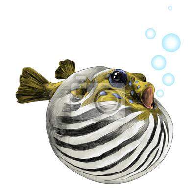 Schön Fisch Färbung Spiele Ideen - Ideen färben - blsbooks.com