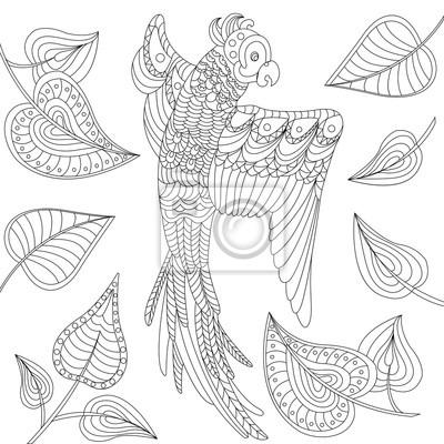 Fliegenden papagei mit blättern. schwarz-weiß-kontur dünne linie ...