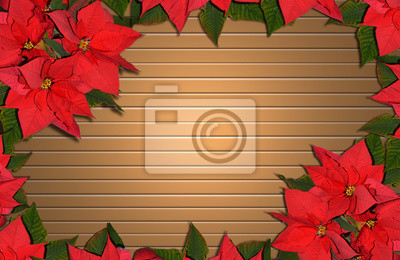 Fototapete Flor De Pascuas Navidad Pascuero Flores Marco Fondo Madera